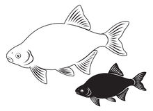 Bream fish. Figure  a shows bream fish Royalty Free Stock Image