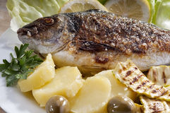 Bream fish garnished with potato and lemon Royalty Free Stock Photography