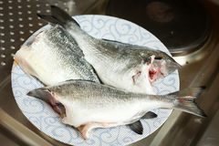 Bream fish on plate Royalty Free Stock Photography