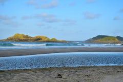 Bream Head Scenic Reserve Stock Photo