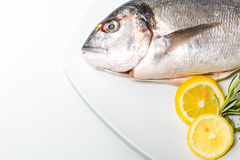 Bream on plate Royalty Free Stock Photos