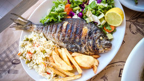 Bream with potato, rice and salad Stock Image