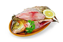 Bream raw in a clay plate with parsley Stock Photography
