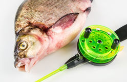 Bream and Rod. On a white background Royalty Free Stock Photos