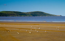 Brean Down Royalty Free Stock Photo