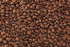 brean kaffe Arkivfoton
