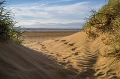 Brean Sand Dunes. The beautiful sand dunes of Brean beach in somerset , England Royalty Free Stock Photography