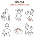Breast cancer, medical infographic. Self - examination. Women`s. Health set. Vector illustration vector illustration