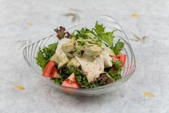 Breast chicken salad including avocado, tomato and red oak topping with wild rocket and salad dressing on washi Japanese paper Stock Images