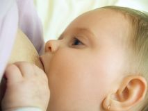 Breast feeding Royalty Free Stock Photo