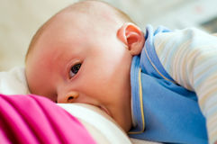 Breast feeding Stock Photography