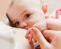 Breast feeding baby Royalty Free Stock Images