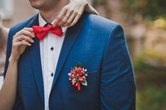 Breast of the man in a suit 1631. Royalty Free Stock Image