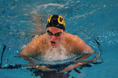 Breast Stroke. A man swimming breast stroke Stock Photos