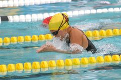 Breast stroke2 Royalty Free Stock Image