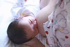 Breastfeeding Royalty Free Stock Photography