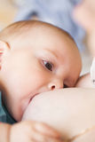Breastfeeding closeup Stock Image