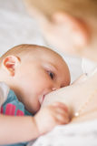 Breastfeeding closeup Royalty Free Stock Images