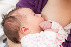 Breastfeeding newborn baby Royalty Free Stock Photography