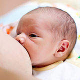 Breastfeeding one week old baby boy Stock Photo
