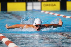 Breaststroke: Alpe Adria Summer Games 2010 Stock Photography