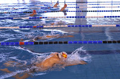 Breaststroke championship. Boys swimming in a pool during a breaststroke championship Royalty Free Stock Photography