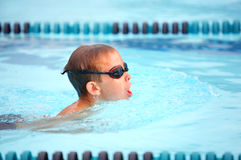 Breaststroke  race Stock Images