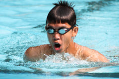 Breaststroke Stock Photography