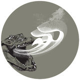 The breath. The crocodile breath, danger and mystic picture Royalty Free Stock Photos