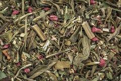 Breathing and bronchitis herbal tea Royalty Free Stock Photo