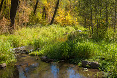 The Breathtaking Beauty and Serenity of Sedona Arizona. A quiet pond in the forest Royalty Free Stock Photography