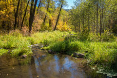 The Breathtaking Beauty and Serenity of Sedona Arizona. A quiet pond in the forest Royalty Free Stock Photo