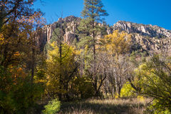 The Breathtaking Beauty and Serenity of Sedona Arizona. The Wonderful colors of a autumn day in the forest Royalty Free Stock Photos
