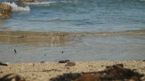 Breathtaking blue rippling water splash on the Cyprus sand beach in macro view with blur rocky background. High tide with breathtaking blue rippling water splash stock video footage