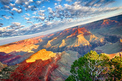 Breathtaking Grand Canyon. View of Grand Canyon at sunrise, USA stock photos