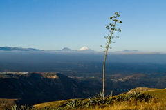 Breathtaking highlands view with Cotopaxi in the Stock Photos
