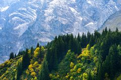 Breathtaking lansdcape of mountains, forests and small Bavarian villages in the distance. Scenic view of Bavarian Alps with majest. Ic mountains in the Royalty Free Stock Photo
