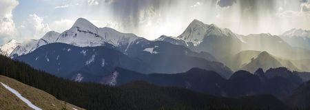 Breathtaking panoramiczny widok wspaniałe mgłowe Karpackie góry, zakrywający z zieleń lasem na mglistym spokojnym ranku lub obrazy stock