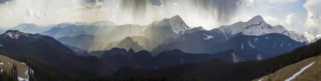 Breathtaking panoramiczny widok wspaniałe mgłowe Karpackie góry, zakrywający z zieleń lasem na mglistym spokojnym ranku lub obraz stock