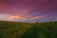 Breathtaking red sunset and twilight over field Stock Photo