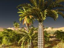 Breathtaking sunrise in the Sahara desert 3d rendering Stock Photography