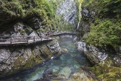 Breathtaking view over colorful Radovna river in Vintgar Gorge. Slovenia Stock Images