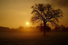Breathtaking winter sunset in suberbs of salzburg Stock Images