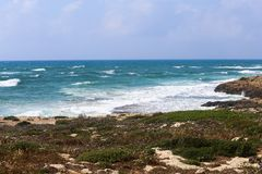Breathtaking wizerunek błękitny morze i wybrzeże zakrywający trawą zdjęcie stock