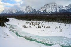 Breathtaking zima krajobraz z Athabasca rzeką w pierwszoplanowych i śnieżnych górach w tle na Icefields obraz royalty free