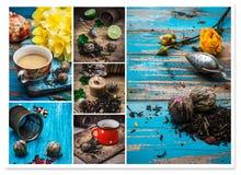Brebaje del té del collage fotos de archivo libres de regalías