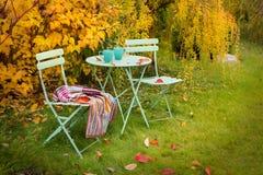 Brecha colorida do jardim do outono com chá e a cobertura quentes Foto de Stock