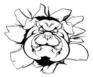 Brecha de la mascota del dogo Imagen de archivo