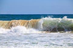 Brechende Welle am Strand stockfotos
