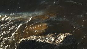 Brechende Wellen auf Felsen stock footage